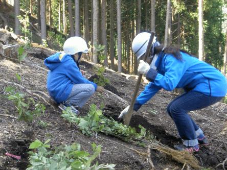 森林づくり支援